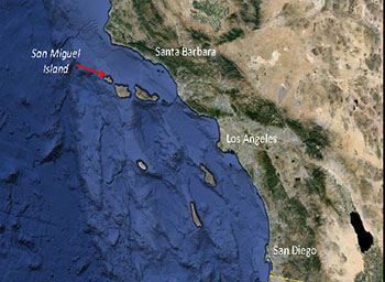 The San Miguel Island Rookery Off The Coast Of California